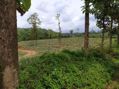 150 Acre Rubber Estate for sale at Kottayam