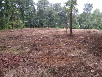 1.42 Acres of Land for Sale at Krariyeli, Perumbavoor, Ernakulam