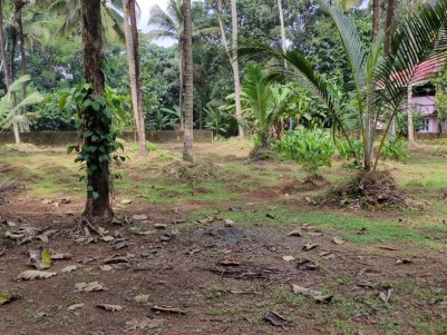 Residential Land For sale at Koovappady,Perumbavoor,Ernakulam