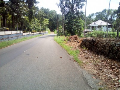 68 Cent Residential land for sale at Manarkadu Kottayam