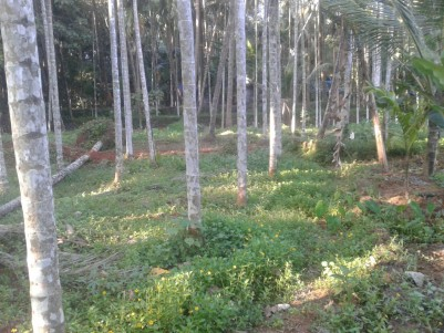 14 Cent land for sale at Kavunthra Nauchad, Calicut