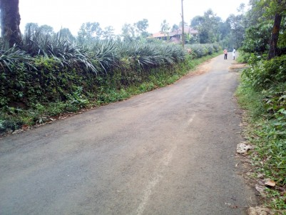 1.52 Acre Residential land for sale near Bharananganam, Pala, Kottayam