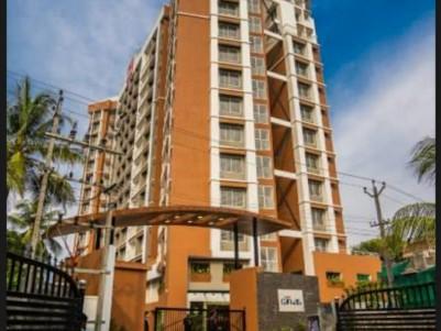 Lake view flat for sale @ Asset Canvas,Maradu,Ernakulam