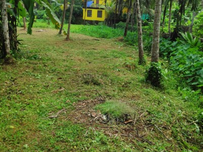 Residential Land For Sale In Mayanad. House Plot For Sale In Kozhikode.