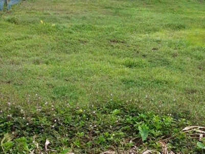 10 Cents plot for sale Near Mamood Jn, Alappuzha