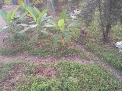 8 Cents Residential land for sale at Chandiroor, Alappuzha