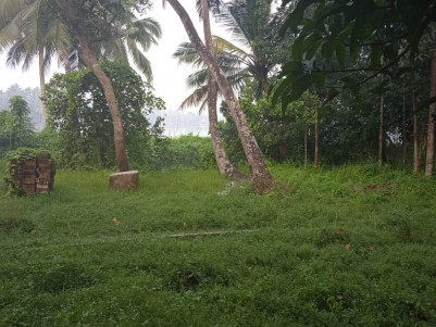 Water Frontage Residential land for sale at Chandiroor, Alappuzha