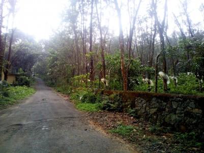 40 Acre Residential land for sale Kalaketty, Kanjirapally, Kottayam
