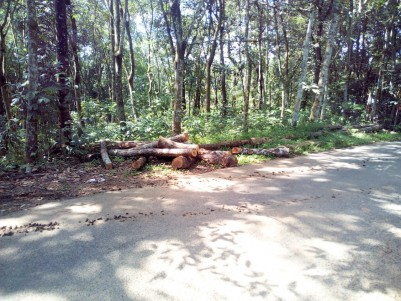 20 Cent Residential land (close to KK Road) for sale near 8th mile Pampady, Kottayam