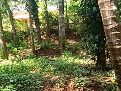 5 Cents of Residential land for sale in Ottappalam, Palakkad