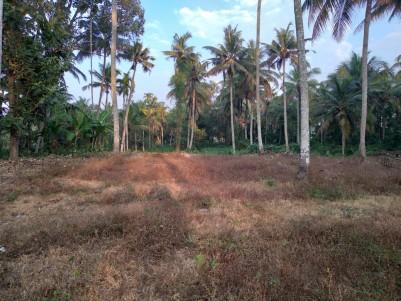 Residential Land for Sale at Thrippunithura, Near Kochupally, Ernakulam