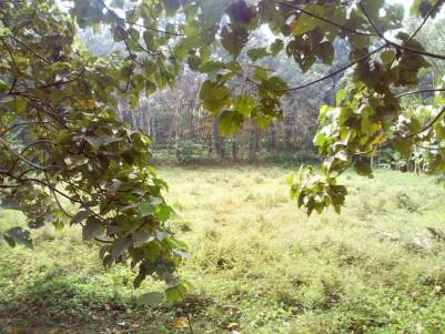2 Acre Residential land for sale near Kanjikuzhy junction, Kottayam
