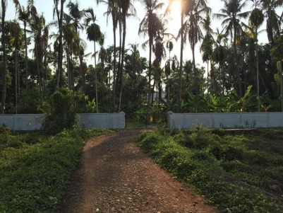 57 Cents of Residential land for sale in Kodakara, Thrissur