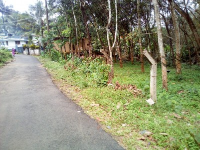 2 Acre Residential Land for sale Near Rubber Board Training Institute Vadavathoor, Kottayam
