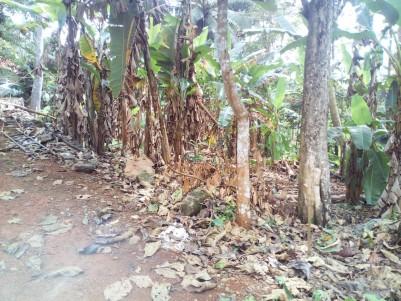 30 Cent Residential land for sale Near JK Hospital Vadavathoor, Kottayam