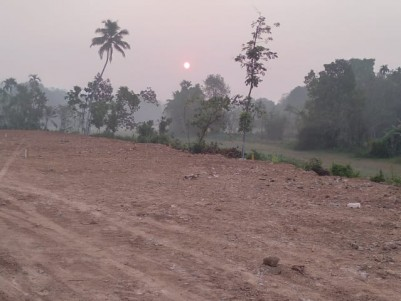 1.6 Acres Land for Sale with all facilities at Mallappally, Pathanamthitta