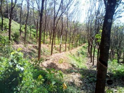 4.5 Acre Rubber plantation for sale near Mary Queen Hospital Kanjirappally, Kottayam