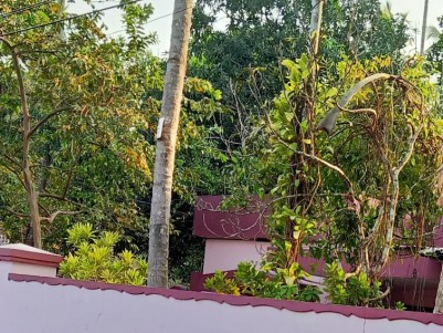 3 BHK House in 12.5 Cents for sale at Kozhikode
