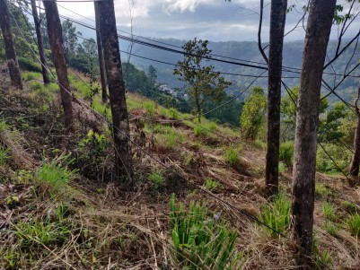 23 Cents Land near Chinnakkanal with Amazing view for Sale