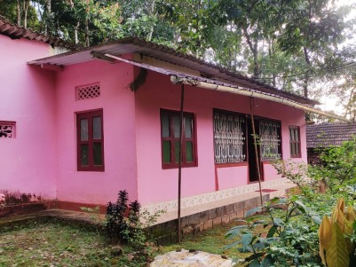 4 BHK House for sale at Adimaly, Idukki