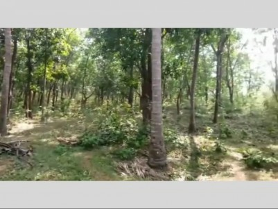 22 Acre Rubber plantation for sale at Vadakencherry, Palakkad