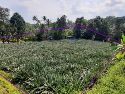 55 Cents of Residencial Land for Sale/Exchange at Oonnukal, Ernakulam