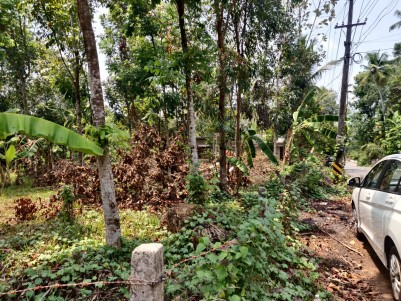 12 Cents of Commercial/Residential Land for sale at Kollappilly, Pala, Kottayam