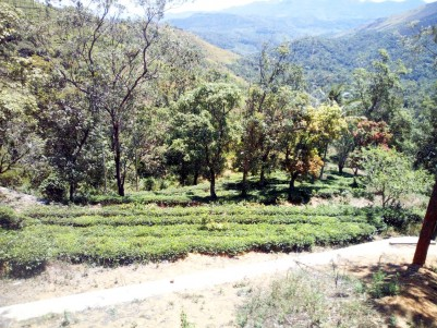 4 Acre Residential land for sale near Mottakkunnu, Vagamon