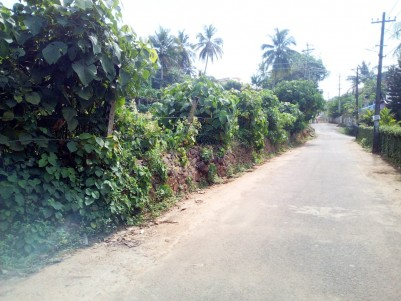 2.43 Acres Residential land for sale near Skyline villa Kanjikuzhy, Kottayam