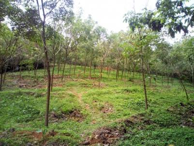 5.5 Acres of Residential land for sale at Thottuva, Kuravilangadu, Kottayam