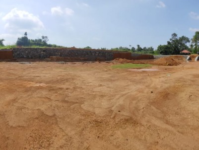 50 Cent Residential plot for sale at Kizhakkambalam, Thamarachal, Ernakulam