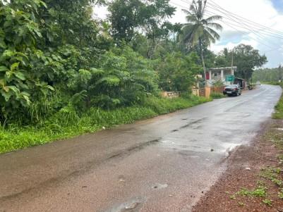 38 Cent Land for sale - Near Irikkur, Kannur
