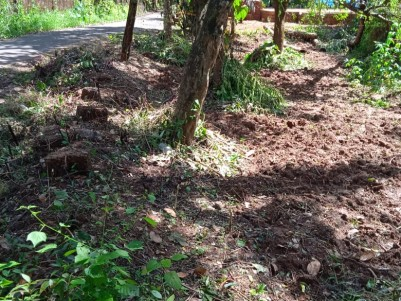 Tar Road Frontage 27 Cents of Residential Fertile Land for sale at Ramanthali, Payyanur, Kannur
