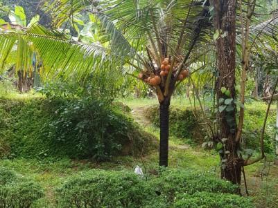 Prime Residential Land For Sale at  Kolenchery, Kochi