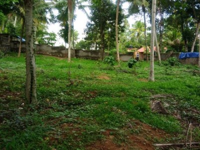 Commercial cum Residential land for sale at Kazhakkoottam, Pallippuram, Trivandrum