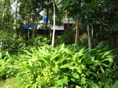 15 Cent Residential Land for Sale at Kaduthuruthy, Kottayam