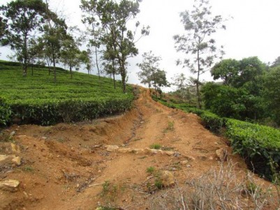 15 Acres of Agricultural land for sale at Vagamon, Idukki